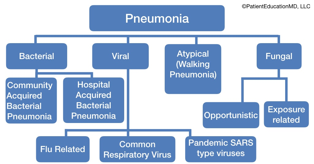A chart showing types and subtypes of pneumonia